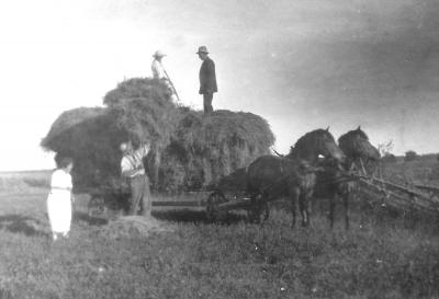 Mannen med hatt uppe på lasset är John Håkansson, Svens och Lasses far och gift med Edith. Kan vara Edith uppe på hölasset. Övr. okända.