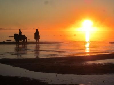 Augusti: soluppgång vid Snausarve